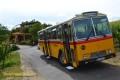 Oldtimer-Postauto-Bus Saurer/Tüscher 3DUK-50 ex P-24660 von www.schwyzer-poschti.de vor Försters Weinterrassen am Rotweinwanderweg, Ahr (6.2011 - Foto: Eltgen)